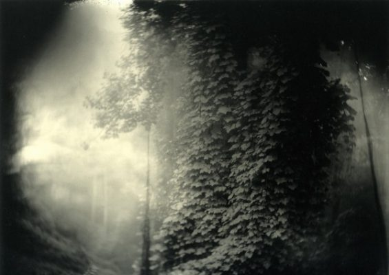 sally-mann-01