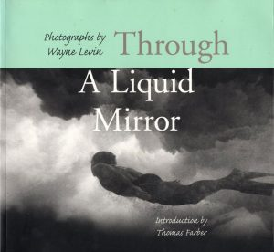 Wayne Levin, Through a Liquid Mirror
