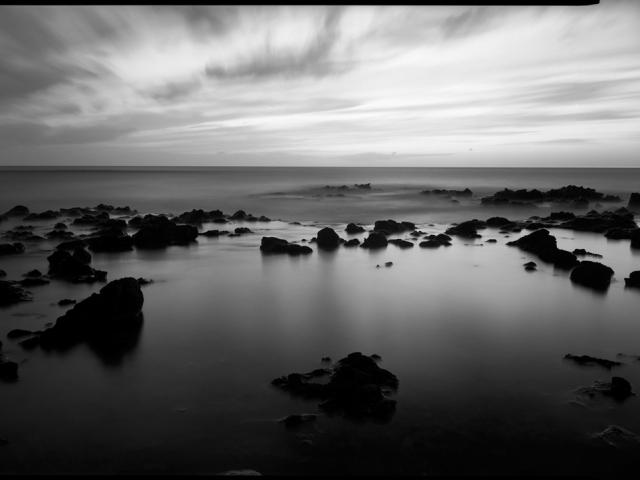 © David Ulrich