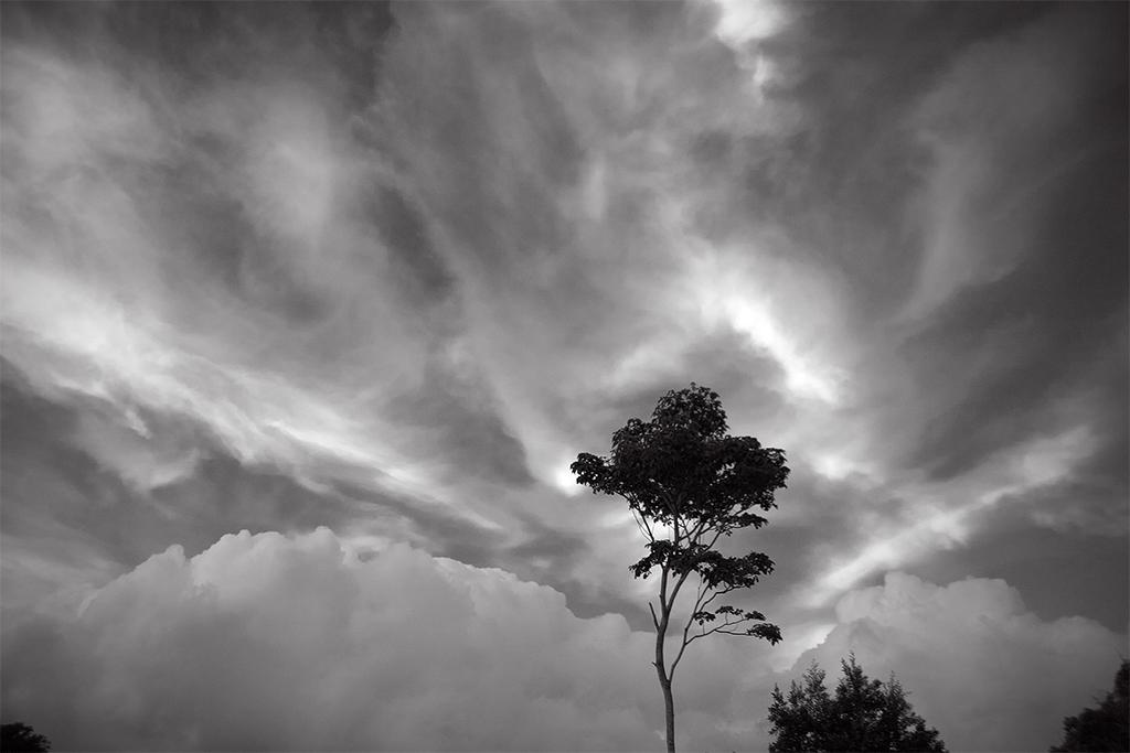 Manoa Sky © David Ulrich